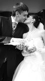 Bride and groom. Black and white portrait of bride and groom kissing and holding pigeons royalty free stock photos