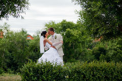 Bride and groom. Kissing in the park stock photos