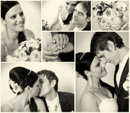 Bride and groom. Collage of six wedding photos stock photography