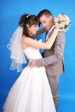 The bride and groom. On a blue background Royalty Free Stock Photos