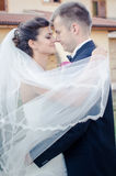 Bride and Groom. On wedding day royalty free stock images