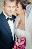 Bride and Groom. Young couple on wedding day royalty free stock photos