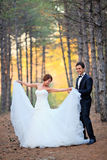 Bride and groom. Beautiful bride with a handsome groom at the forest stock image