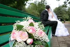 Bride and groom. On the bench Royalty Free Stock Photos