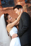 Bride and Groom Stock Photography