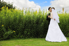 Bride and groom against grass Stock Images