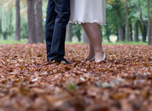 The bride and the groom at atlas dress yellow foliage Stock Images