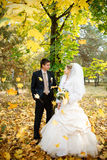 Bride and groom  in autumn Royalty Free Stock Photography