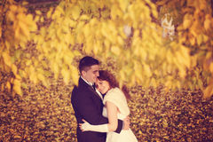 Bride and groom on autumn day Royalty Free Stock Images