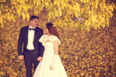 Bride and groom on autumn day Stock Images