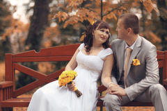 Bride and groom at autumn park Stock Photography