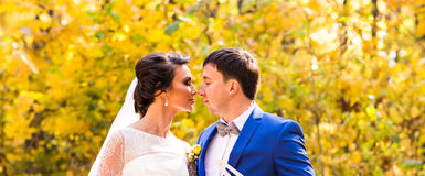 Bride and groom in autumn park Love Life.  stock image