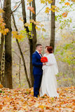 Bride and groom at the background of beautiful autumn landscape Royalty Free Stock Photos