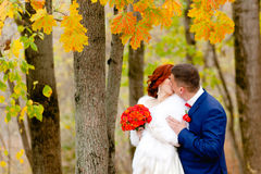 Bride and groom at the background of beautiful autumn landscape Stock Photography