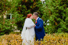Bride and groom at the background of beautiful autumn landscape Stock Image