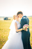 The bride and groom on the background of field Royalty Free Stock Images