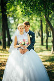 The bride and groom on the background of the park alley Stock Photography