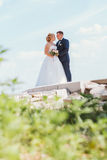 Bride and groom on the background of the river Royalty Free Stock Photography