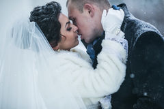 The bride and groom on the background of a winter city Royalty Free Stock Photo