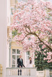 Bride and groom on backyard of vintage building under blossoming magnolia tree Royalty Free Stock Photography