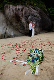 Bride and groom at the beach. Royalty Free Stock Photo