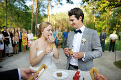 Bride and groom being met by parents Royalty Free Stock Image