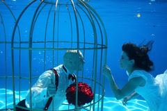 Bride and groom and a birdcage underwater pool water dive Royalty Free Stock Photo