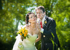Bride and groom blowing dandelion Stock Photos