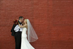 Bride and Groom by Brick Wall Royalty Free Stock Image