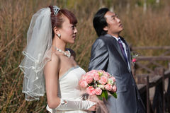 Bride and groom on bridge, looking up (landscape) Stock Images