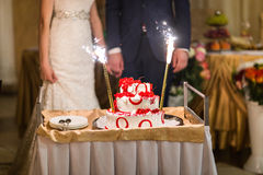 Bride And Groom With Cake  At wedding Reception Stock Image