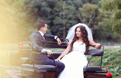 Bride and groom in a carriage Royalty Free Stock Photos