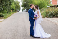 Bride and groom celebrating wedding Royalty Free Stock Images