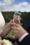 Bride and Groom with Champagne Stock Image