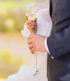 Bride and groom with champagne glasses in wedding day Royalty Free Stock Photos