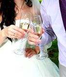 The bride and groom clink glasses.  stock photo