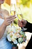 Bride and groom clinking glasses on wedding-day. Royalty Free Stock Images
