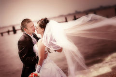 Bride and groom on the  coast Stock Images