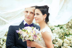 Bride and groom covered with veil close-up. Royalty Free Stock Images