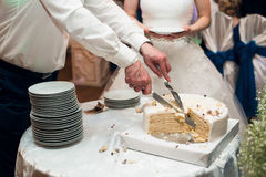 Bride and groom cut the cake. Bride and groom cut the blue cake Stock Photography