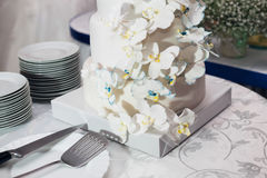 Bride and groom cut the cake. Bride and groom cut the blue cake Stock Photos