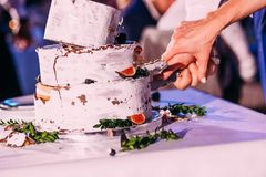 Bride and groom cut rustic wedding cake royalty free stock images