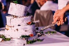 Bride and groom cut rustic wedding cake stock photos