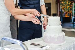 The bride and groom cut the traditional wedding cake. royalty free stock photography