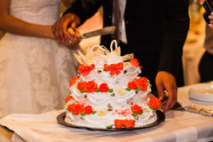 The bride and groom cut the wedding cake Royalty Free Stock Image