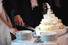 The bride and groom cut the wedding cake Stock Image