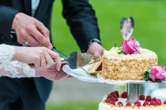 Bride and groom cut wedding cake stock photos