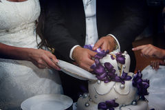 Bride and groom cut a wedding cake Royalty Free Stock Images