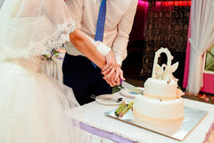 Bride and groom cut wedding cake. Bride and groom cut white two-tier wedding cake Stock Photo