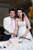 Bride and groom cuts the wedding cake Stock Photo
